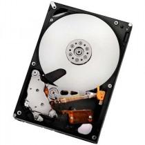 HDD HGST 1TB, Server Ultrastar A7K2000 (3.5'', 32MB, SATA II-300, 7200 rpm) (HUA722010CLA330)